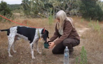 A woman giving water to a dog.