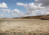 A dry, grassy plain.