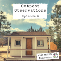 A house with the text, Outpost Observations, Episode 3