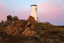 Lighthouse on the rocky coast with a pink sunset.