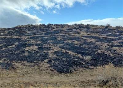 A hill that has been burned.