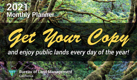 Get your copy of the BLM California planner today!