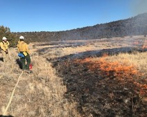 Fire crews monitoring a prescribed fire in dry grass.