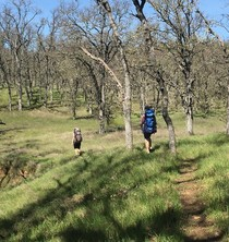 Two people hiking along a small trail on a wooded hillside.