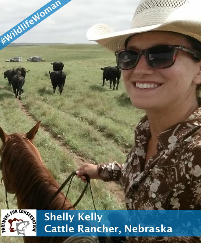 Shelly Kelly