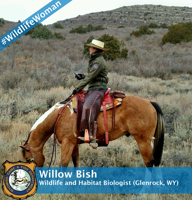 Willow Bish