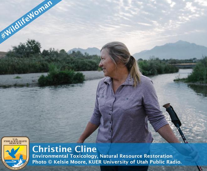 Christine Cline