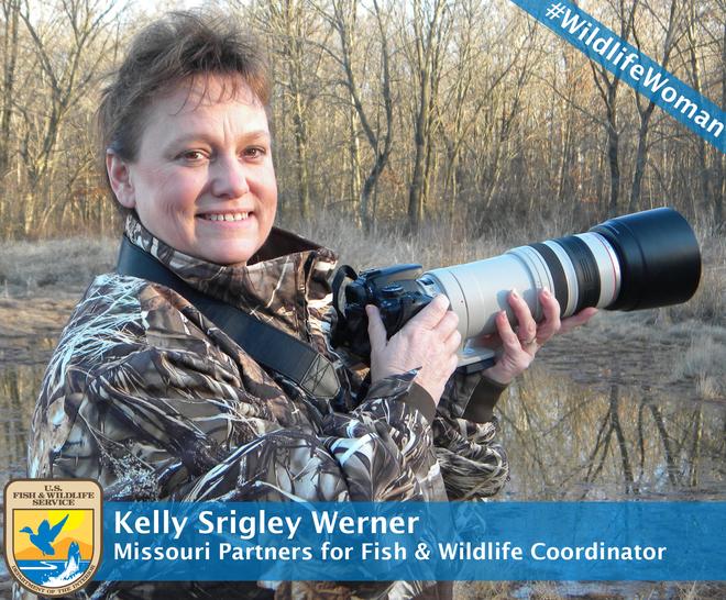 Kelly SrigleyWerner