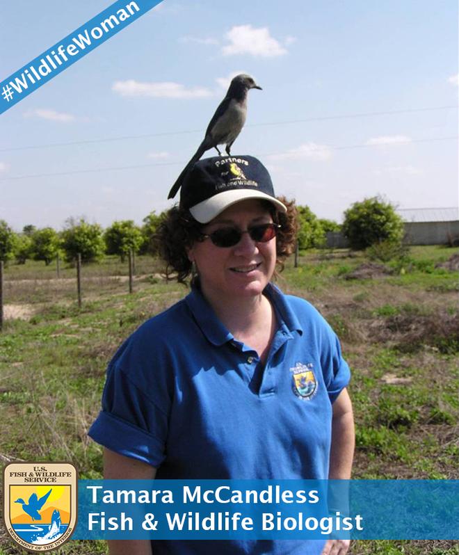 Tamara Mccandless