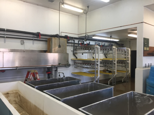 walleye hatching system at Genoa NFH