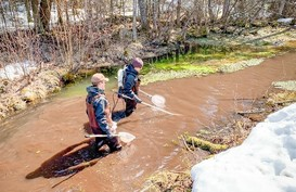 Two staff from Ashland FWCO electrofishing Shacte Creek