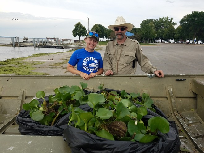 Biologist and partners work on invasive water hyacinth