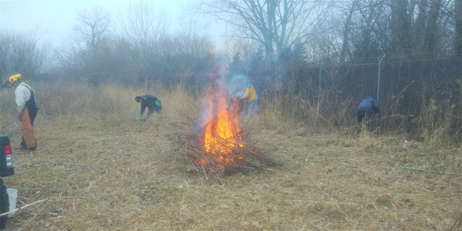 burning for land restoration
