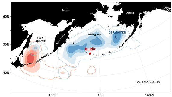Early winter range map for Red-Legged Kittiwakes that nest on Buldir and St. George Islands