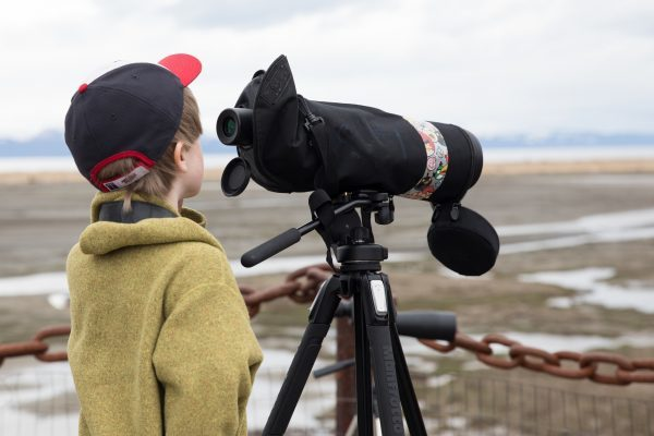 Young birdwatcher and scope
