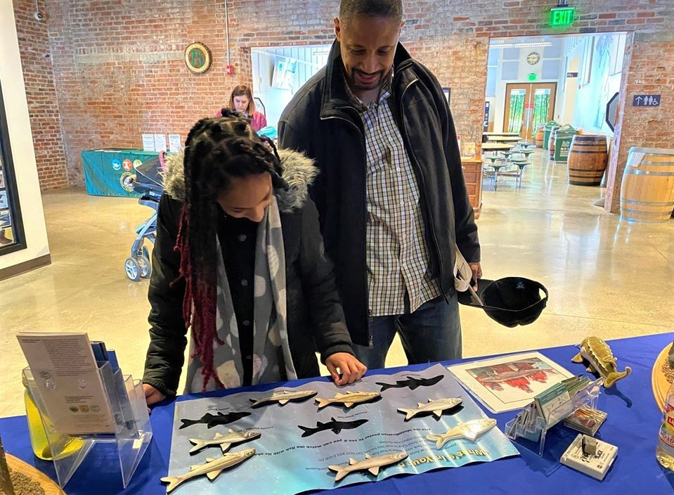 visitors try their hand at the fish cutout shadow activity