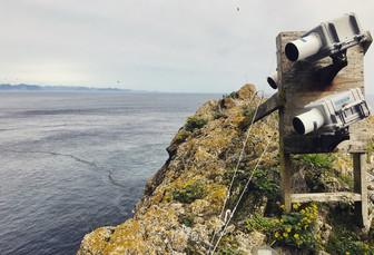Timelapse cameras on the Barren Islands