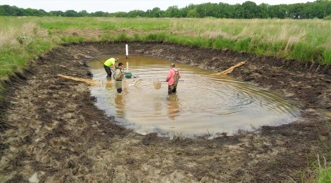 edited biologists pond sampling
