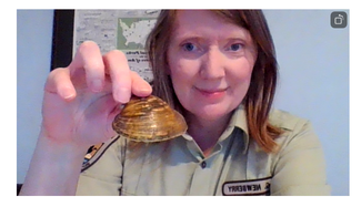 fws staff displays mussel during online class