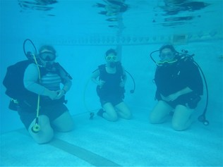 divers training underwater image in a swimming pool