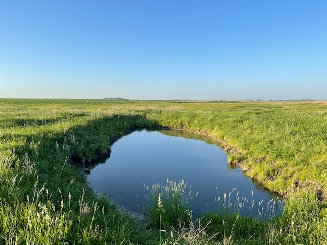 oxbow where sampling for Topeka shiner eDNA was completed