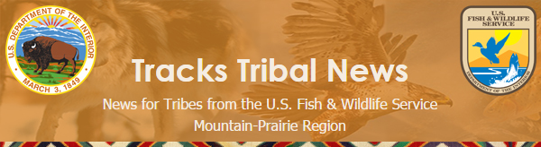 tracks tribal news