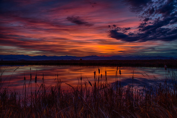 Ninepipe National Wildlife Refuge in Montana by Dave Fitzpatrick/USFWS