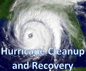 Hurricane Cleanup and Recovery