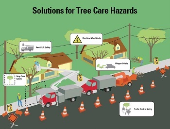 qt solutions for tree care hazards original - New Publications on Tree Care and Silica Offer Worksite Safety Solutions