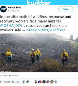 In the aftermath of wildfires, response and recovery workers face many hazards. @OSHA_DOL's resources can help keep workers safe → https://www.osha.gov/dts/wildfires/response.html