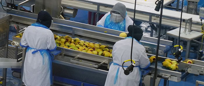 OSHA has resources to protect workers in the food processing industry.