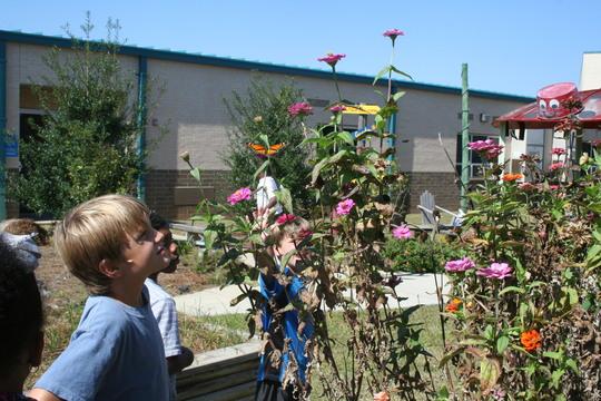 Kinchafoonee students make observations in pollinator garden