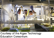 Algae Technology Education Consortium (ATEC)