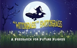 Witchgrass Switchgrass: A Feedstock for Future Flights