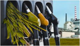 Bioenergy BETO