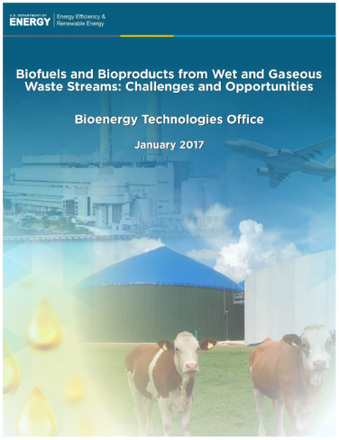 Biofuels and Bioproducts from Wet and Gaseous Waste Streams: Challenges and Opportunities Report Cover