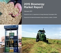 2015 Bioenergy Market Report
