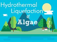 Hydrothermal Liquefaction of Algae
