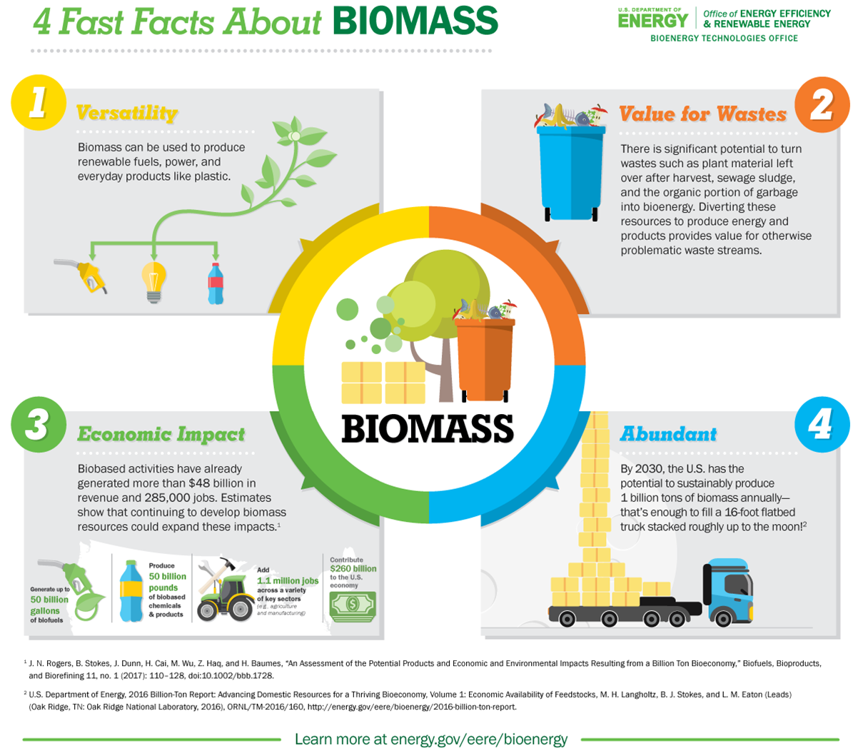 4 Fast Facts About Biomass