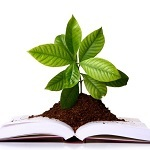 Graphic of a plant growing from a book