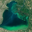 Satellite image of algal bloom at lake st. claire