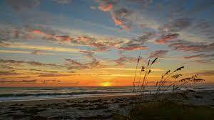 sunrise florida