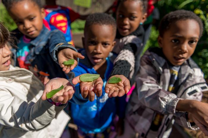 Edible Schoolyard NOLA