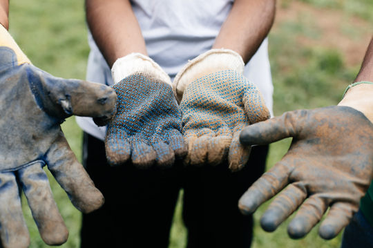 Boys wearing garden gloves