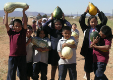 National Farm to School Network Tribal Grant