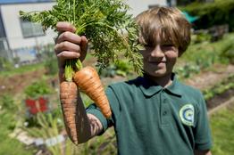 Boy holding carrots