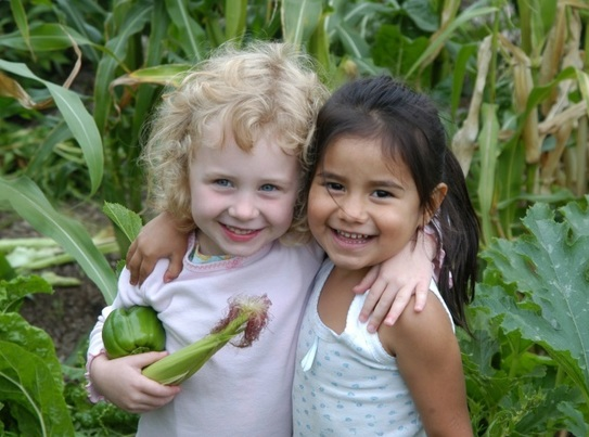 Girls in garden holding corn and green pepper