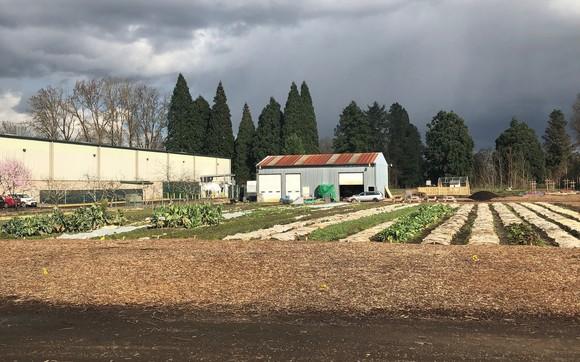 Oregon Food Bank community garden
