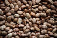 Pinto Beans (Public Domain Images - PIXNIO)