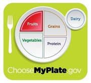 MyPlate highlighting Fruits